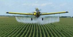 رش مبيدات ضارة.jpg