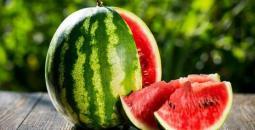 البطيخ.jpg