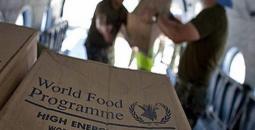 الأغذية العالمي.jpg