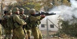 palestinetoday-قوات-الاحتلال-الإسرائيلي24.jpg