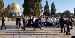 مجموعات استيطانية تقتحم المسجد الأقصى
