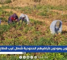 مزارعون يعودون لأراضيهم الحدودية شمال غرب قطاع غزة