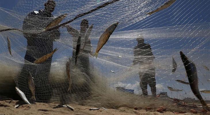 gaza fishing.jpg
