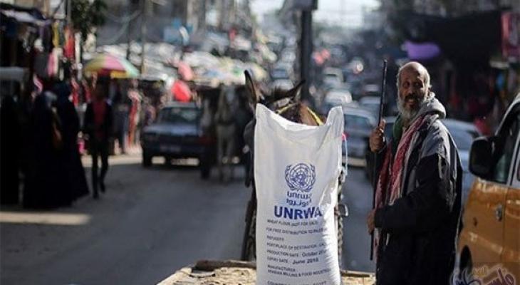 palestinetoday-اونروا.jpg