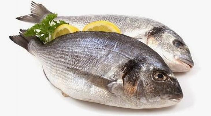 سمك.jpg